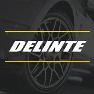 шины Delinte